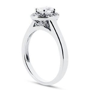 er 1972 oval pave halo_side-ring